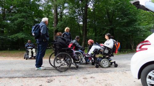 Photos de la forêt de Fontainebleau%2F20171014124853.JPG