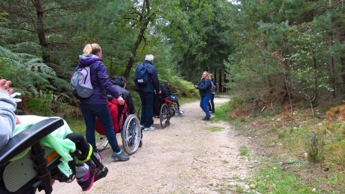 Photos de la forêt de Fontainebleau%2F20171014151614.JPG