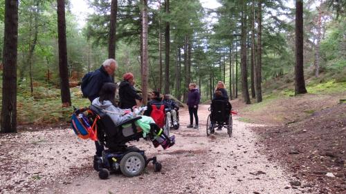 Photos de la forêt de Fontainebleau%2F20171014152231.JPG